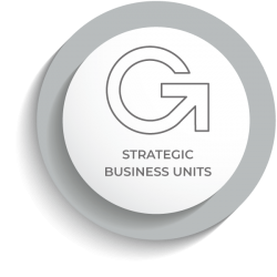ATM Strategic Business Units